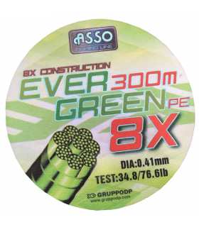 ASSO - TRESSE EVERGREEN 41/100 3006